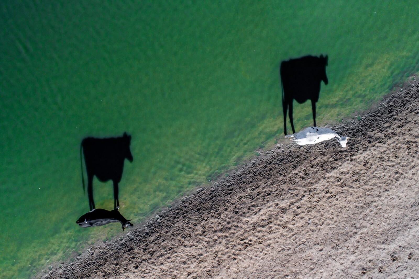Las mejores imágenes de 'Dronestagram'