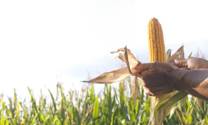 Gruma concretó la compra de la participación del 23.16% que ADM tenía en la fabricante mexicana (Foto: Getty Images)