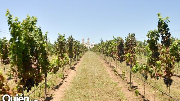 La Tierra prodiga de San Miguel de Allende Donde se asienta Cuna de Tierra.