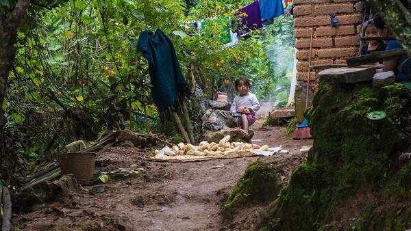 Sierra Mixe - Oaxaca - Pobre