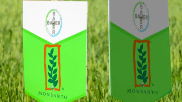 Logos combinados de Bayer y Monsanto