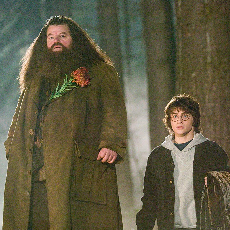 Resultado de imagen para Hagrid